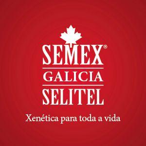 https://www.selitel.es/