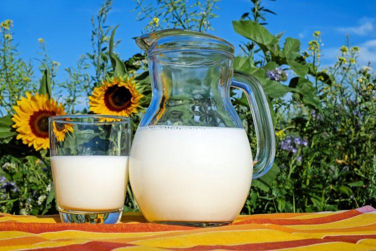 Bayer pone en marcha la campaña #EsLaLeche<br><small>para  promover  el  consumo  de  lácteos  y  apoyar  al  sector  del  vacuno  de  leche  </small>