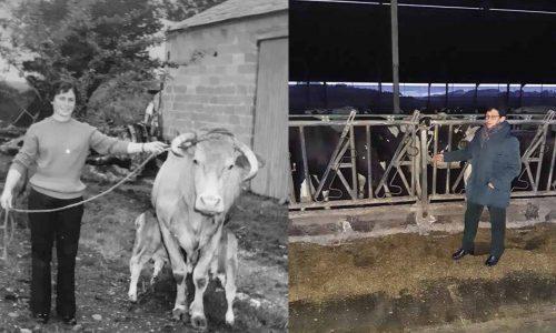 «Una vida dedicada a las vacas» <br><small>Ester Cabana Pérez</small>