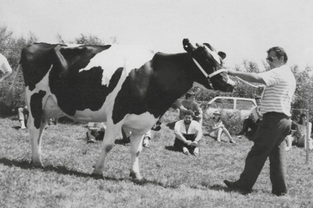 MANUEL BERDOMÁS TEJO<br></noscript><small>La vida de un ganadero</small>