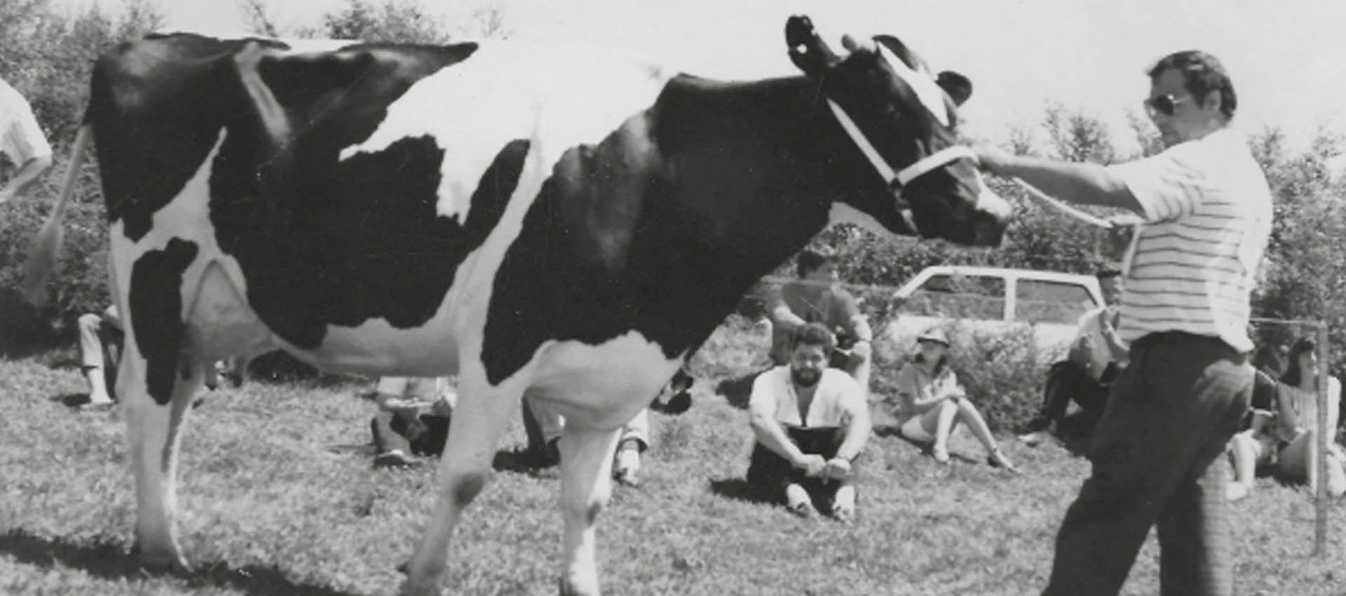 MANUEL BERDOMÁS TEJO<br><small>La vida de un ganadero</small>